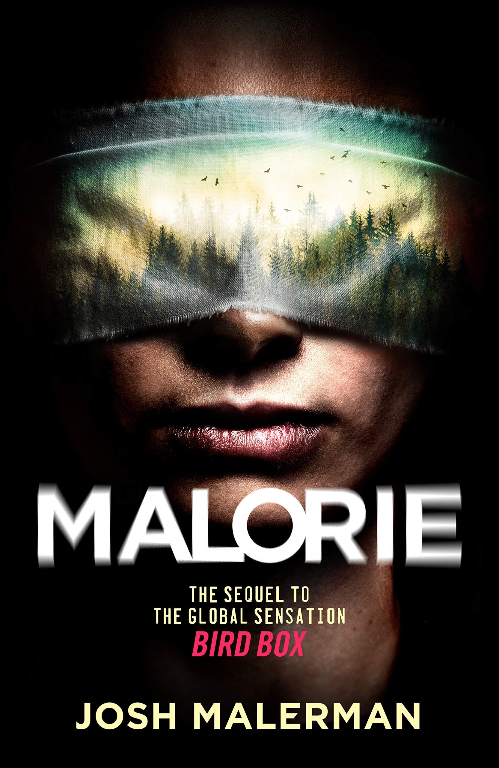 Malorie-bird-box-2
